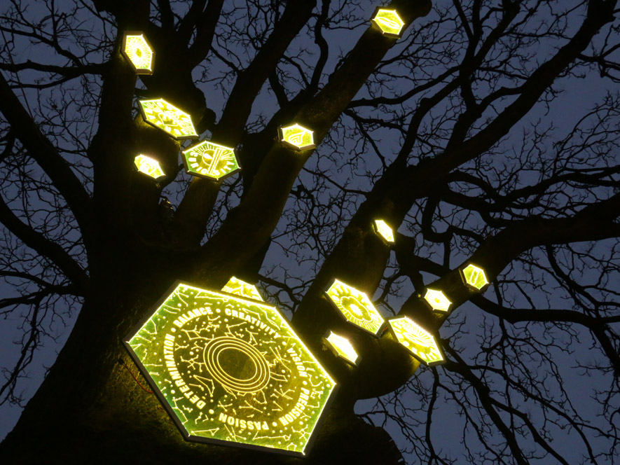 A night time image of glowing perspex hexagons suspended in a leafless tree etched with 'GOOD NATURE', 'CURIOSITY', 'BALANCE', 'PASSION', 'PRECISION', 'DETERMINATION' with simple drawings to illustrate