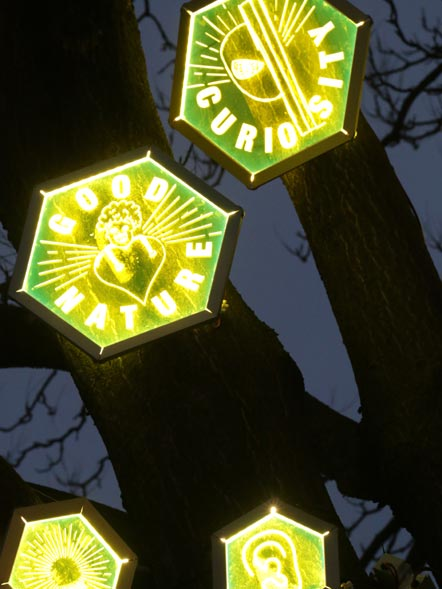 A night time image of glowing perspex hexagons suspended in a tree etched with 'GOOD NATURE', 'CURIOSITY' with simple drawings to illustrate